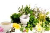 طبقبه بندی گیاهان دارویی