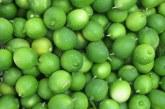 طرز تهیه لیمو عمانی خانگی