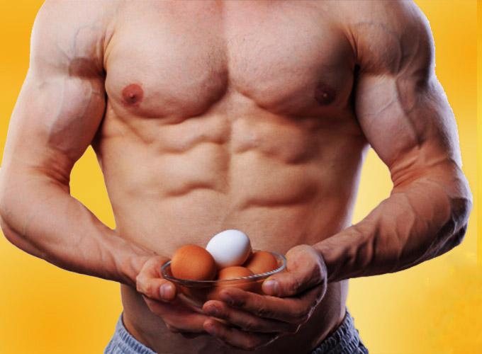 سفیده تخم مرغ، بدنسازی، تقویت عضلات