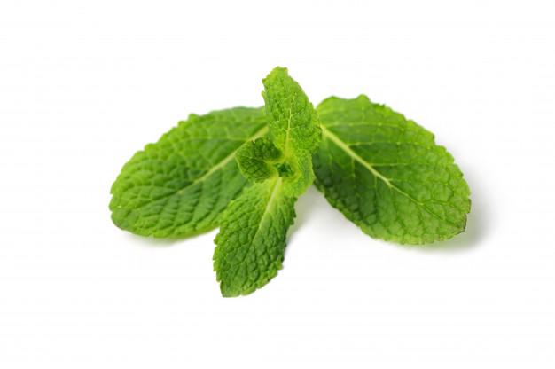 فواید سلامتی چای نعناع برای پوست