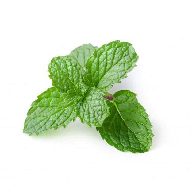 عوارض سلامتی چای نعناع