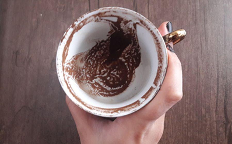 تعبیر فال قهوه اسب