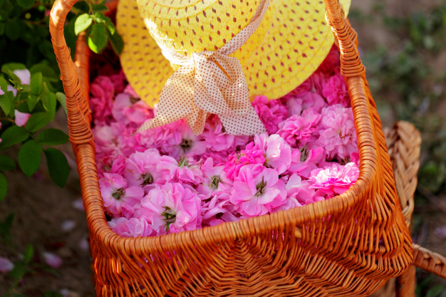 روغن حامل گل محمدی