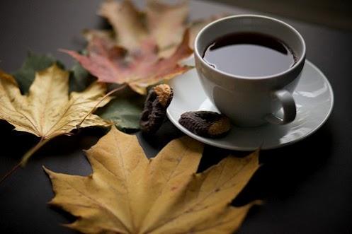 تعبیر فال قهوه پروانه