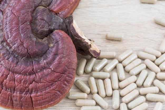 تاثیر قارچ گانودرما بر کبد چرب ، قهوه گانودرما