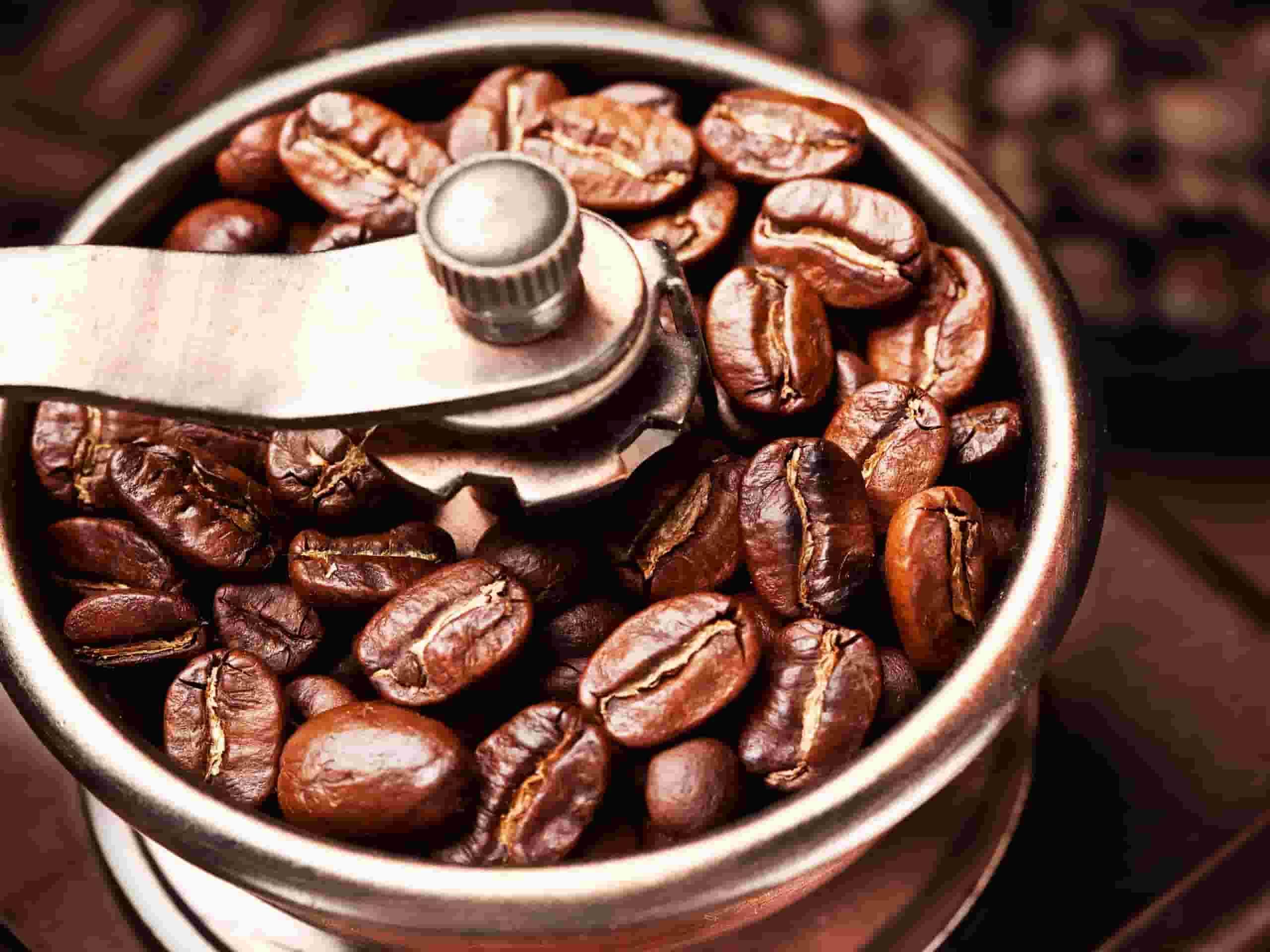 قهوه روبوستا چیست