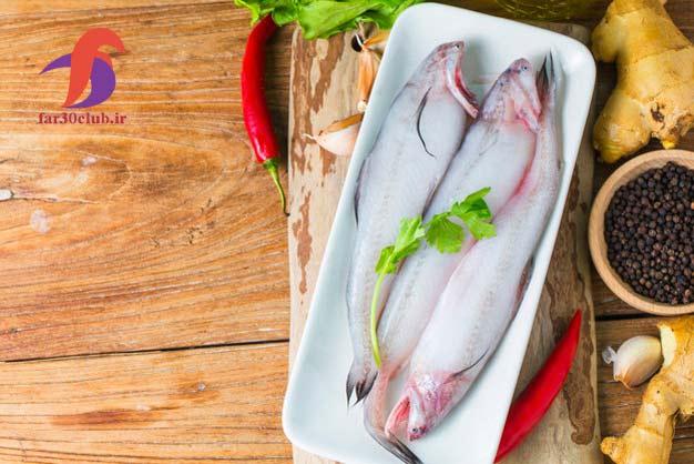 اردک ماهی انزلی ، اردک ماهی ایران