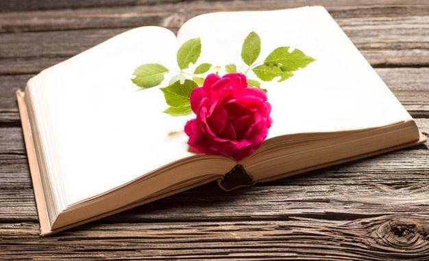 یک بیت شعر عاشقانه ، شعر عاشقانه زیبا در یک بیت ، شعر عشق ناب