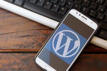 آموزش حرفه ای ووردپرس ، wordpress چیست