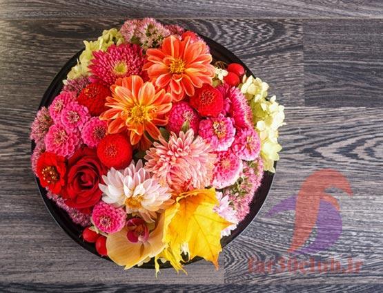 عاشقانه عکس گلهای بسیار زیبای جهان ، پروفایل عکس گلهای بسیار زیبای جهان